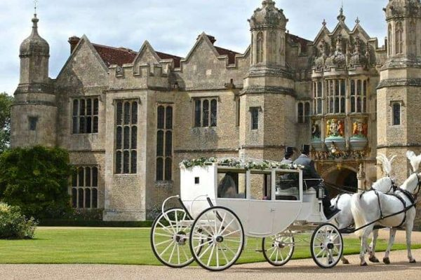 Horse-and-carriage-for-party