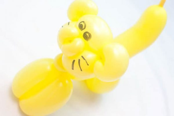 balloon modeling